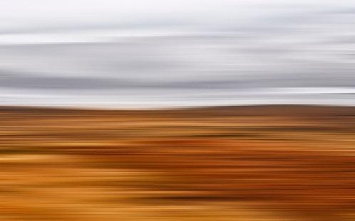Woven Desert