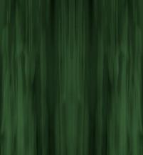 Labradorite - Forest