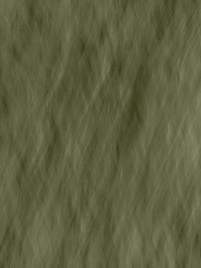 Tinzenite - Moss