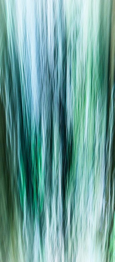 EmeraldStrands©2018BrianGoodman.jpg