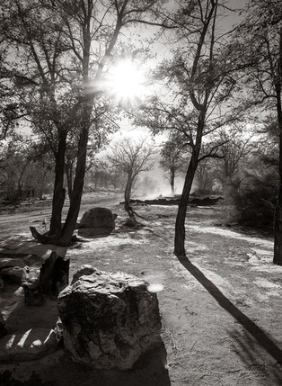Merritt Park - Dust Devil in Park (ca. 2014)