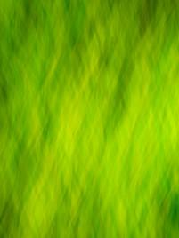 Tinzenite - Lime