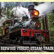 RCR_slider_RedwoodTrain_2017-1.png