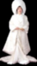 Wedding Dress Rental Plan