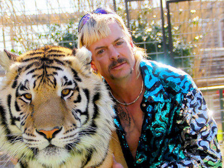 Tiger King: The Docuseries You Didn't Know You Needed