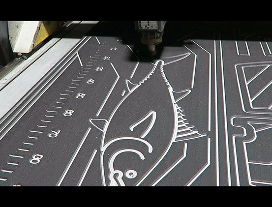 H2O Video 1.mp4