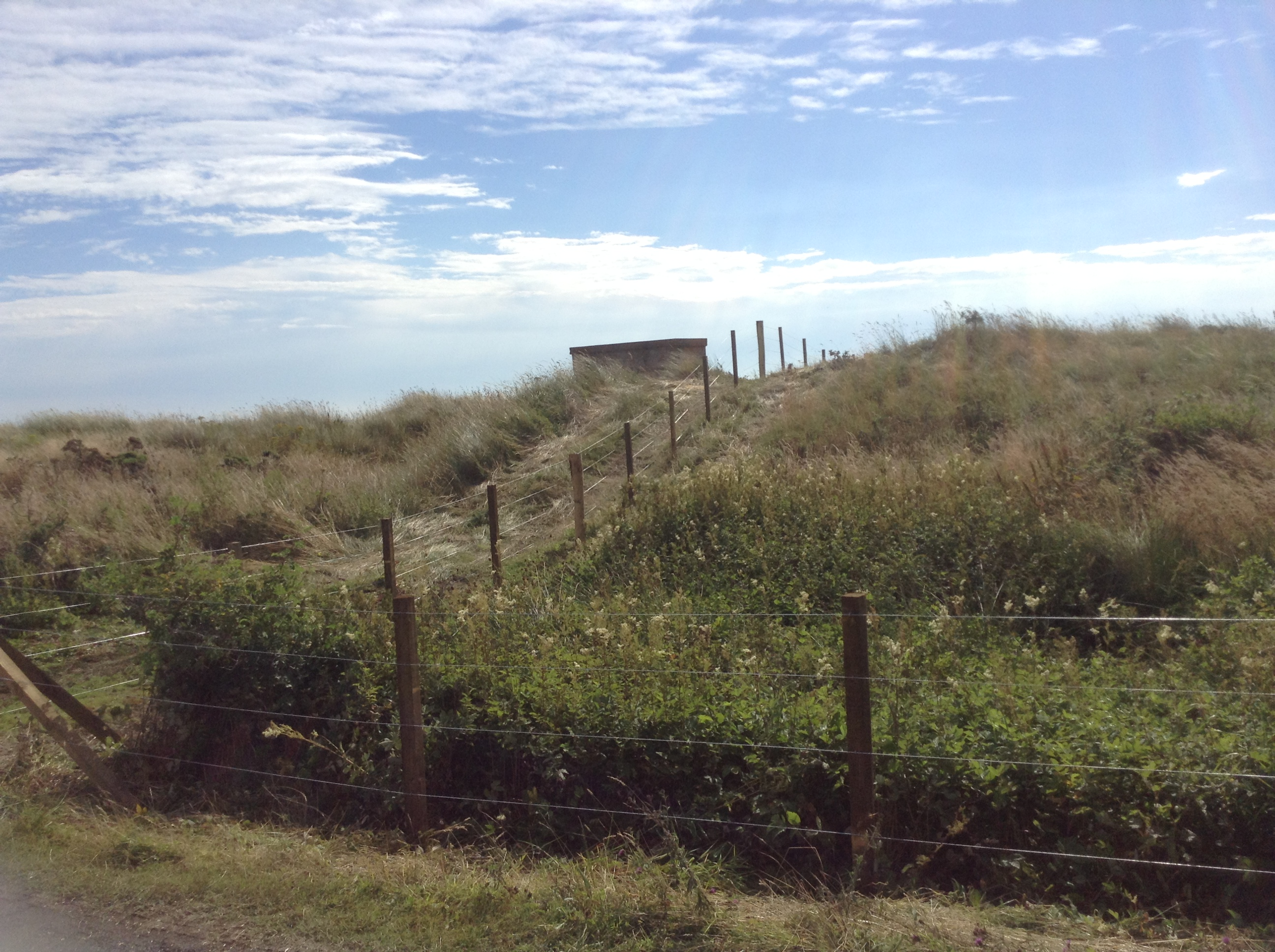 DRURIDGE FENCE.JPG