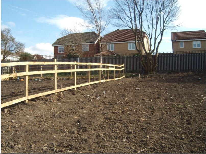 ss allotment wallsend 8.JPG