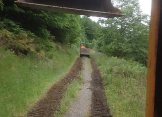 Forestry - Mountain Bike Trail