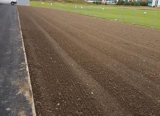 Cultivation & Seeding