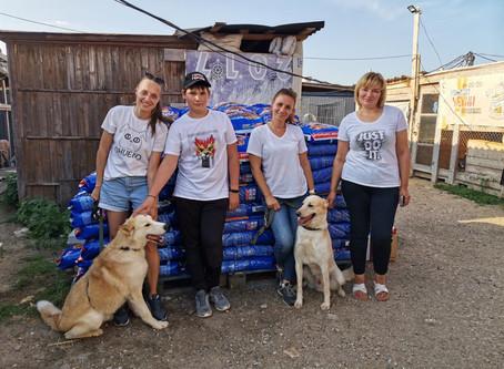 Вагончик добра отвез корм в приют в Калуге. Два пса из приюта поехали в Зоогородок.