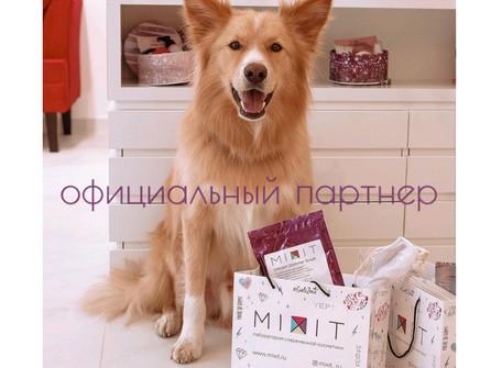"""Компания MIXIT-официальный партнер благотворительной акции """"Вагончик добра"""""""