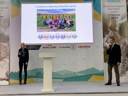 """""""Котодетки"""" на международной Выставке Winter Cat Show"""