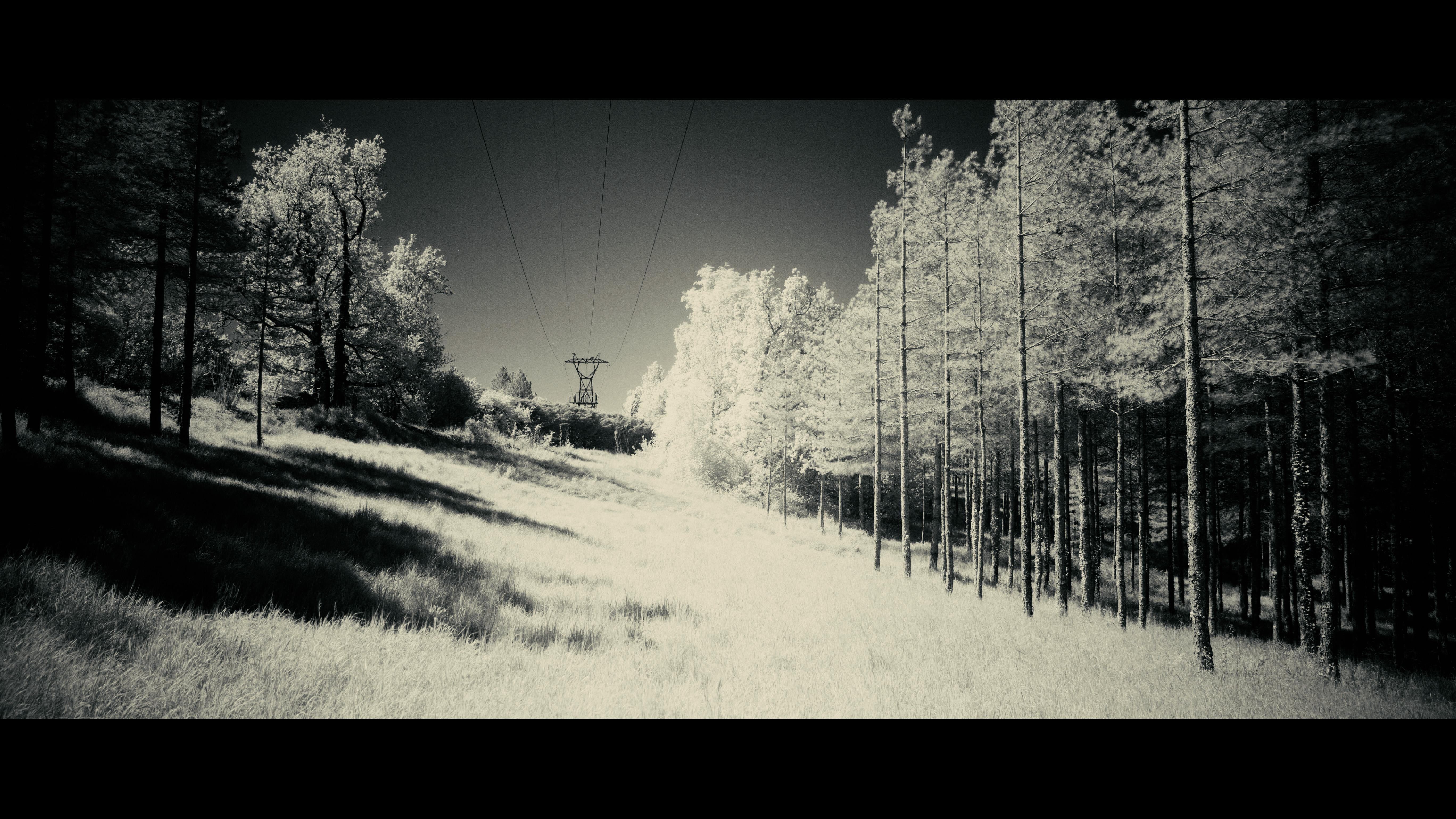 IMG_5164 (0-00-00-00)