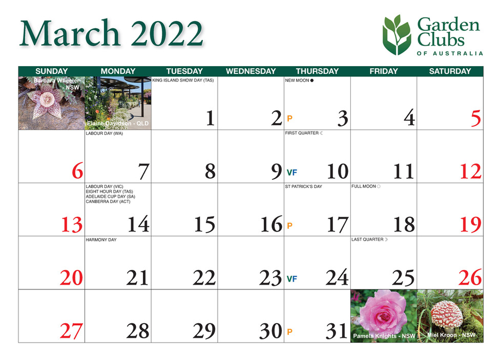 CA252 Garden Club Calendar 2022_Page_07.jpg