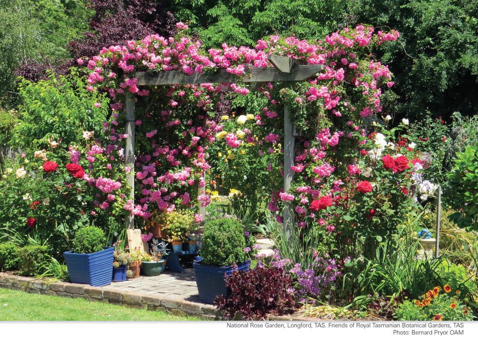 CA252 Garden Club Calendar 2022_Page_24.jpg
