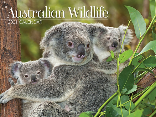 CALENDAR 2021 340X242MM AUSTRALIAN WILDLIFE
