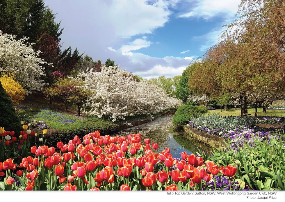 CA252 Garden Club Calendar 2022_Page_16.jpg