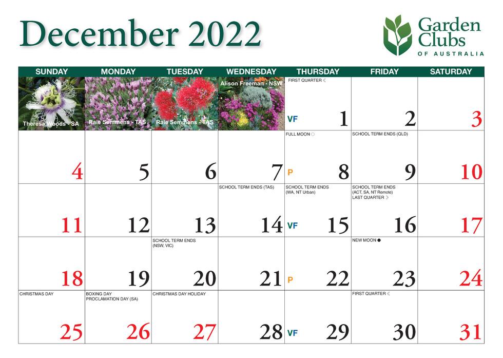CA252 Garden Club Calendar 2022_Page_25.jpg