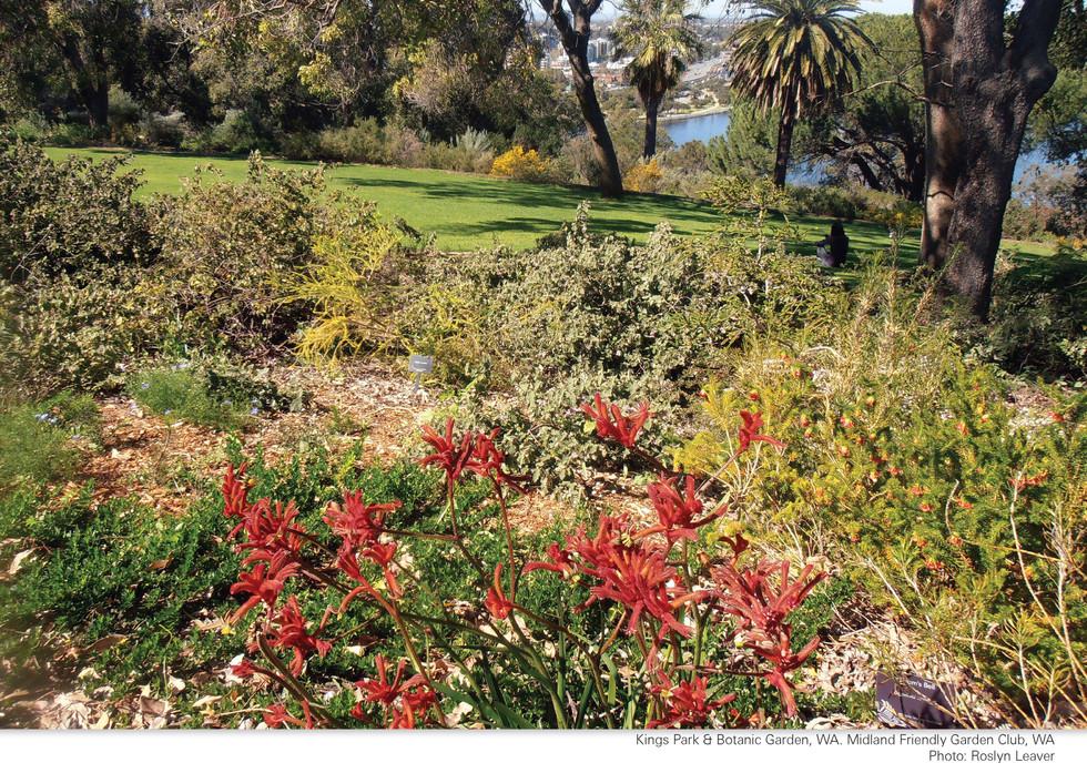 CA252 Garden Club Calendar 2022_Page_04.jpg