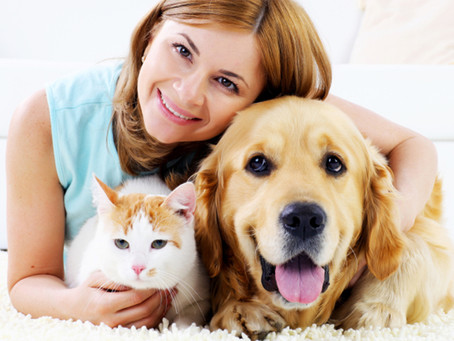 Speaking Part 2 Revision – Describing a Pet or Animal