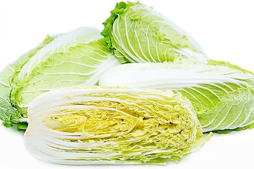 Napa Cabbage - Jumbo