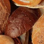 cat-bakery.jpg