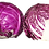 Thumbnail: Red Cabbage