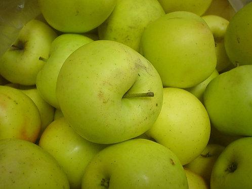 Mutsu (Crispin) - Apples