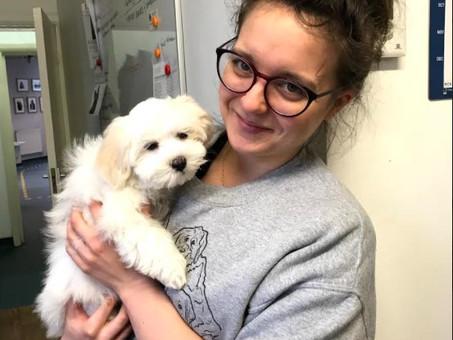 Kenzie's Veterinary Nursing Journey