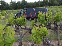 Auf dem Weg in die Provence