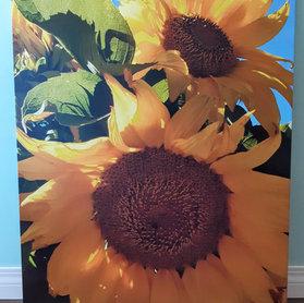 Joyful Sunflowers