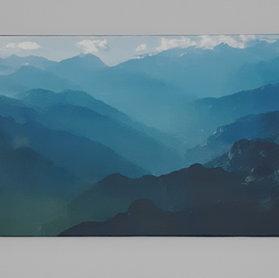 Blue Rockies