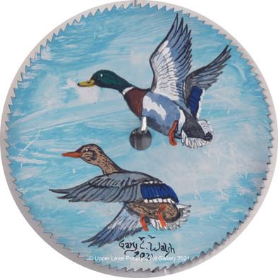 Mallard Ducks - Sold