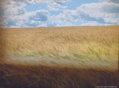 Wheat Field - Sold