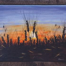 Sunset Wheatfield