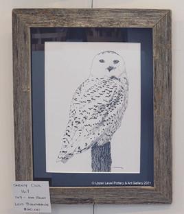 Snowy Owl 167