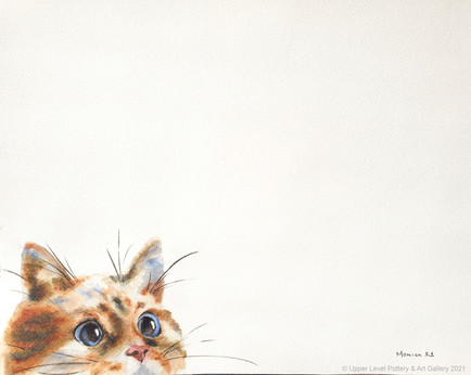 Curious - Sold