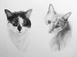The finished portrait of Milly and Tigge