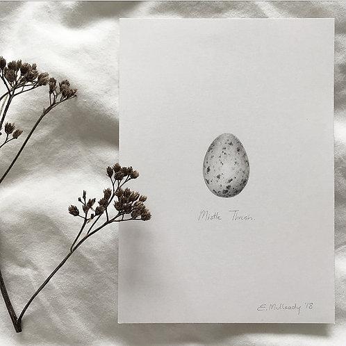 """""""Study of a mistle thrush egg in graphite"""" (Original, unframed)"""