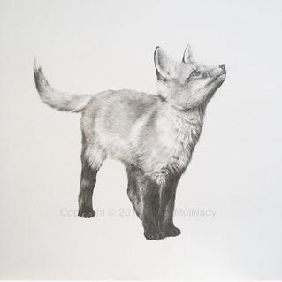 """""""Up!"""" - Fox Cub"""