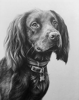 The finished portrait of Hurley! Loved l