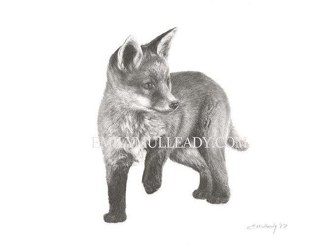 """Fox cub, exploring"" (Limited edition print)"