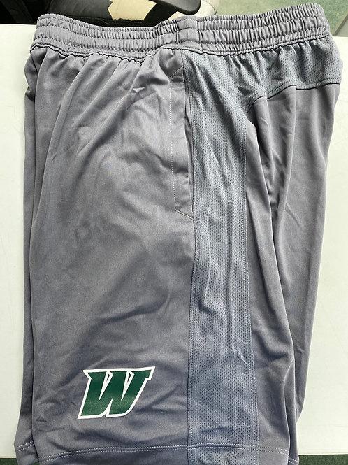 UA Raid Shorts (grey)