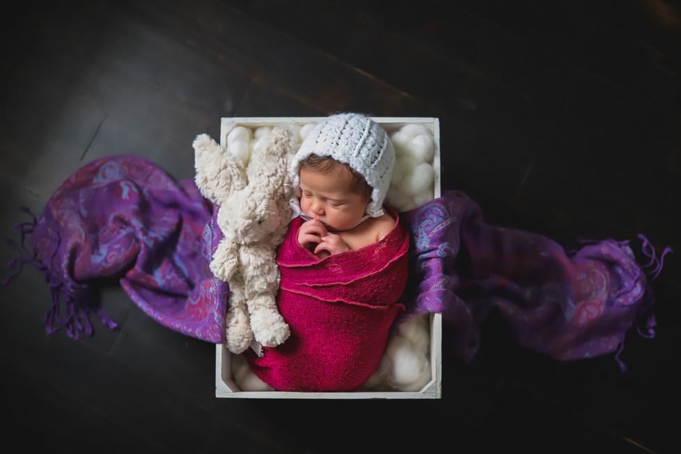 Baby Aurelia - Halifax Newborn Photographer