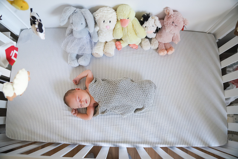 Halifax Newborn Lifestyle Photography