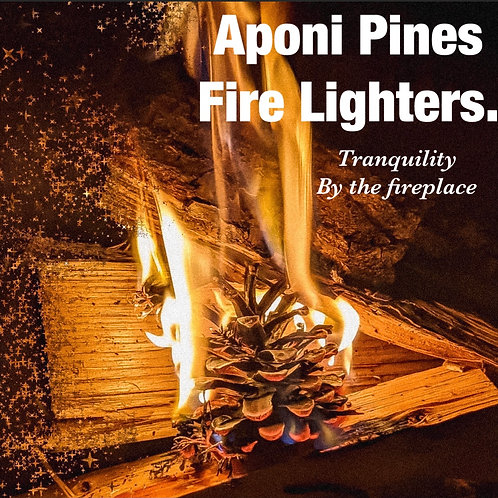 Scented Pine Cone Fire Lighters -Individual