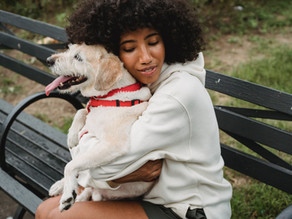 Emotional Support: How ESAs Improve Your Life—What to Know
