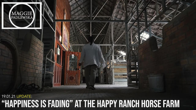 """""""HAPPINESS IS FADING""""at The Happy Ranch Horse Farm (Siem Reap, Cambodia)"""