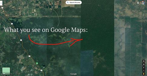 google11.jpg